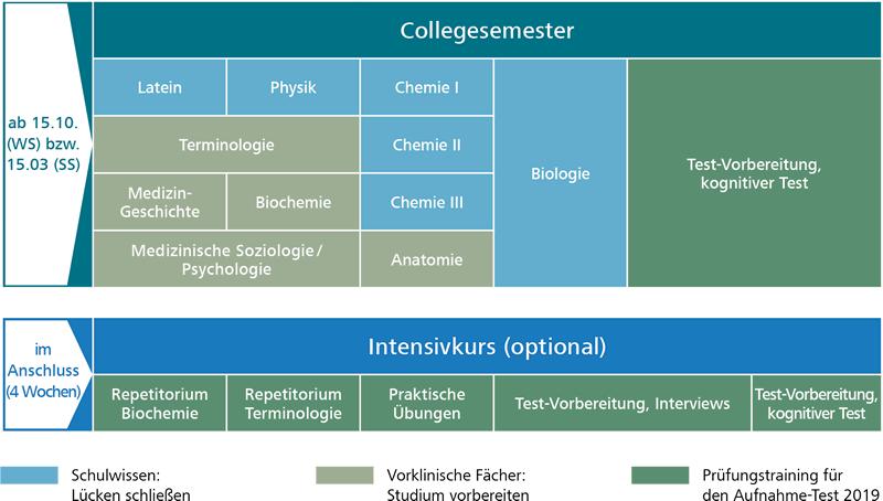 Fein Anatomie Des Menschen College Kurs Galerie - Anatomie und ...